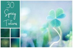 30 Spring Textures by LovePhotoMoment on @creativemarket