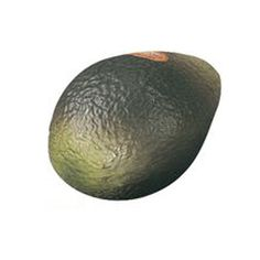 Remo Avocado-shaped Fruit Shaker by Remo. $7.00. Go Crazy with our novel, Avocado-Shaped Fruit Shaker!  Fun to play with its' authentic look and size!  Sounds as good as it looks!   See our listings for other available fruit-shaped percussion shakers!  They're Wild & Crazy!
