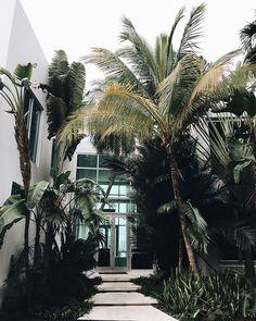 Miami Casa