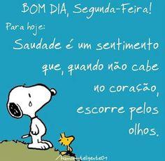 Flor Maria - Google+