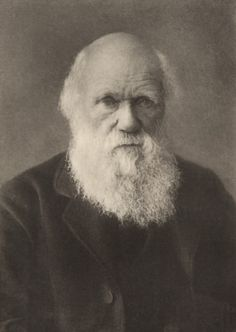 Charles Darwin c. 1880, photographed by Elliott and Fry.