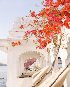 Colours of India 🌸 Ancient Greek Architecture, Gothic Architecture, Temple Gardens, Fantasy Art Landscapes, Udaipur, Island Resort, Vietnam Travel, Best Cities, India Travel