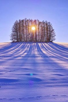 Like a Monument Valley - Biei, Hokkaido, Japan . by Atsushi Hayakawa on Beautiful World, Beautiful Places, Beautiful Pictures, Beautiful Shoes, Winter Scenery, Winter Sunset, Winter Trees, Snow Scenes, Winter Beauty