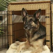 Crate-trained dogs feel comfortable in their own space. However, the average crate does nothing to improve the ambiance of your home with its stark wire or plastic appearance. A homemade crate cover can be made to match your decor and will protect your pet from light when he wants to sleep. A crate cover also is useful to keep a dog calm while...