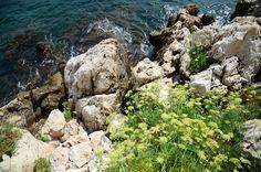 빌프랑슈 쉬르메르 Villefranche Sur Mer, Water, Outdoor, Water Water, Aqua, Outdoors, Outdoor Games, Outdoor Living