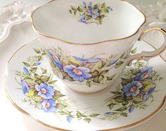 English Fine Bone China Rosina Tea Cup & Saucer Wild Flowers Pattern Tea Party