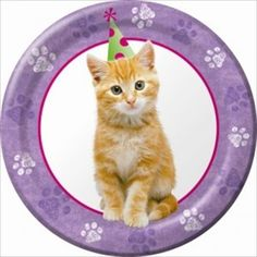 Cuddly Kitten Small Paper Plates