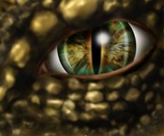 eye of the dragon. Dragon Eye, Fire Dragon, Fantasy Creatures, Mythical Creatures, Mythical Dragons, Polymer Clay Dragon, Dragon's Lair, Dragon Images, Animal Totems