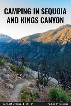 The best tent and RV camping sites in Kings Canyon and Sequoia National Park. Restrictions, pet policy, dump stations, how to find free camping nearby. Cold Springs Campground, Sunset Campground, Camping Games For Adults, Tent Camping, Outdoor Camping, Giant Sequoia National Monument, Camping In Illinois, Adventure Travel, National Parks