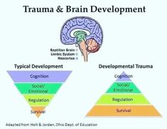 This pin illustrates the impact of trauma on brain development. It is a useful resource for clients to highlight the severity of the impact of trauma. Mental And Emotional Health, Social Emotional Learning, Social Skills, Coping Skills, Life Skills, Trauma Therapy, Therapy Tools, School Social Work, Emotional Regulation