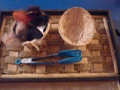 The Work Plan: It's Montessori Monday!!