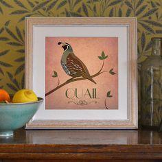 "Quail Bird Print Original Design Animal Alphabet Poster Art Deco Vintage 1940's Childrens Baby Nursery 7x7"" Square Cute Beautiful Retro"