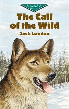The classic Jack London novel Call of the Wild, about a domesticated dog who joins a wolf pack, has been adapted into a 1972 film and loosely adapted into a 3D film in 2009.