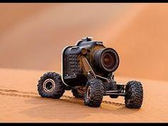 No es una GoPro pero parecido. Esto es lo que sucede al poner una cámara en un carro a control remoto e ir directo a una manada de leones bebes
