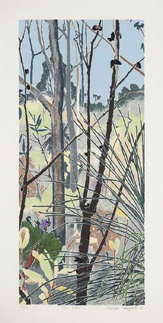 Cressida Campbell - The Bush, 1988