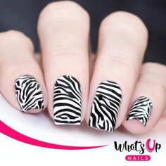 Whats Up Nails - Animalistic Nature Cheetah Nail Art, Zebra Nails, Nail Polish Dupes, Gel Polish, Zebra Nail Designs, Nail Tape, Liquid Nails, Nail Stamping Plates, Color Club