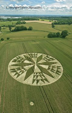 Corley near Coventry, Warwickshire | 11th July 2012 | Wheat L5