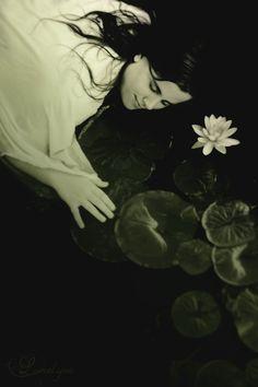Nymphea by Lorelyne on deviantART
