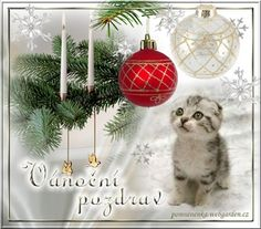 Vánoční přání - Obrázková přání Christmas Bulbs, Holiday Decor, Home Decor, Weaving, Decoration Home, Christmas Light Bulbs, Room Decor, Interior Decorating
