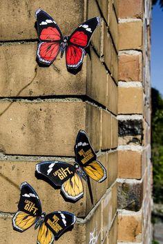 Boastful Butterfly Art : butterfly art