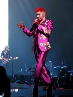 Adam Lambert in pink