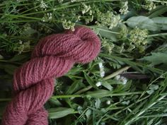 Naturaly plant dyed wool yarn in pale red. DK yarn weight. Organic. Suitable for knitting tablet weaving, crochet and nalbinding.