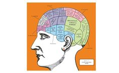 The Food Writer's Brain