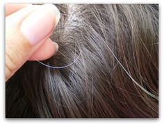 5 Homemade Natural Recipes to Make a Hair Mask to Prevent and Reverse Gray Hair - Are you looking for ways to prevent and reverse gray hair naturally? Here are a few easy organic recipes to create a hair mask to prevent and reverse gray hair naturally. Grey Hair Cure, Stop Grey Hair, Gray Hair, White Hair, Beauty Care, Diy Beauty, Beauty Skin, Beauty Hacks, Beauty Tips