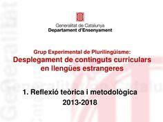 Grup_Experimental_Plurilinguisme_2013