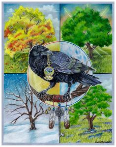 Raven - seasons