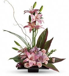 Imagination Blooms with Cymbidium Orchids in Peterborough ON, Flowers By Kay