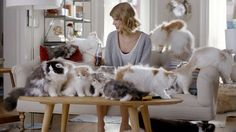 Taylor Swift en el comercial de Coca Cola con decenas de lindos gatitos