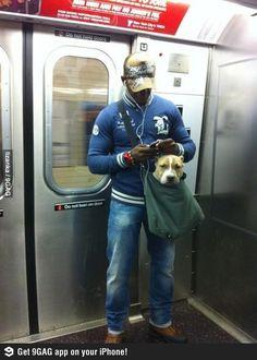 NY Subway bans any dog that won't fit in a bag..  :)
