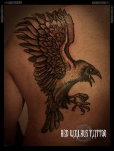 love ravens