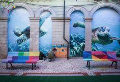The turtle aquarium @AgitÁgueda  #agitagueda #agitagueda2016 #agitaguedaartfestival #agueda #streetart #festival #urbanart #umbrellaskyproject