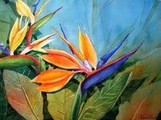 Pinturas de aves del paraiso.