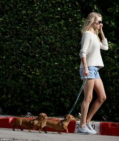 Rosie Huntington-Whiteley took a morning walk in the Hollywood Hills, California, with her two pet Dachshunds Dolly and Peggy. (April 2014)