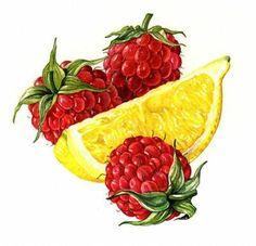 Rosie Sanders - raspberries and lemon wedge