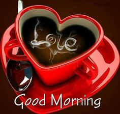 If you are searching for good morning images with flowers, then you have come to the right place. You are very welcome to our website for Good Morning Images with Flower. Good Morning Images Flowers, Latest Good Morning Images, Good Morning Beautiful People, Cute Good Morning, Good Morning Coffee, Good Morning Boyfriend Quotes, Good Morning Quotes, Morning Pics, Good Morning Sweetheart Quotes