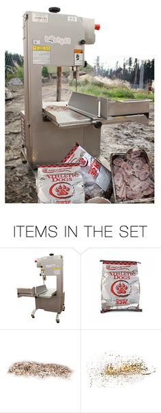 """""""There Was a Guided Kennel Walk, With Information on Equipment, Training, Nutrition, Food Prep & Poop Removal…Massive Quantities of Bulk Meat (Beaver, Lamb, Chicken, Beef & Salmon) Were Stacked Near a Saw, Which Was Used to Slice the Meat for the Dogs"""" by maggie-johnston ❤ liked on Polyvore featuring art"""