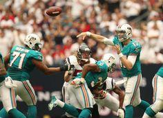 Miami Dolphins 2012