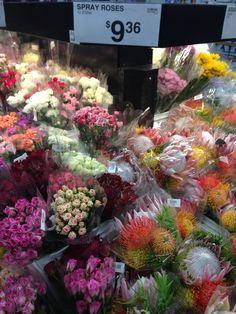 Sam S Club Roses