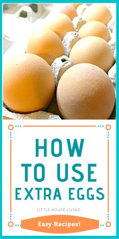 Freezing Your Eggs, Bacon And Cheese Quiche, How To Make A Poached Egg, Little House Living, Pickled Eggs, Frugal Meals, Easy Meals, Breakfast Dishes, Breakfast Ideas