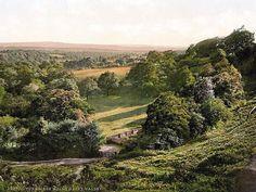 tunbridge england | Happy Valley, Tunbridge Wells, England