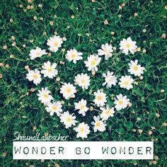 #wonder