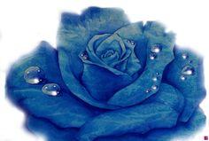 una rosa blu-Michele Zarrillo di Natalia Khromykh