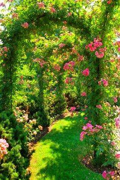It's Springtime in England.