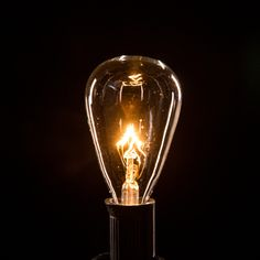 Our 5 Watt base globe light bulbs can be paired with any of our cord sets! Patio String Lights, Globe String Lights, String Lighting, Clear Light Bulbs, Patio Lighting, City Lights, Base, Cords, Evolution