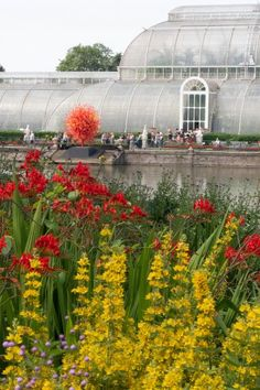 How to find garden design inspiration at Kew Gardens Kew Gardens, Longwood Gardens, Landscape Design, Garden Design, Patio Design, Evergreen Groundcover, Meme Design, Ground Cover Plants, Low Maintenance Garden