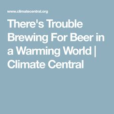 There's Trouble Brewing For Beer in a Warming World | Climate Central